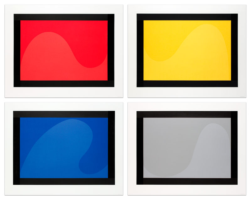 Irregular Forms (Flat and Glossy Colors) with Black Border
