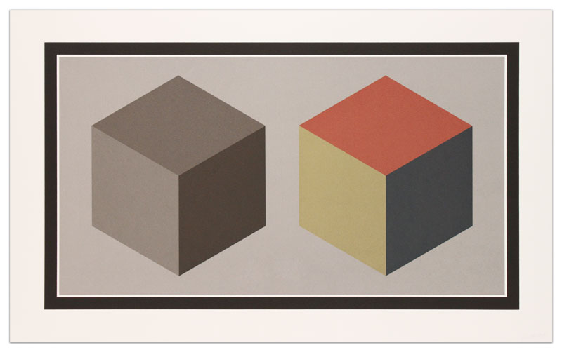 Double Cubes in Grays and Colors Superimposed